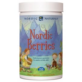 Nordic Berries